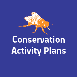 Conservation Activity Plan