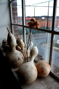 Gourds with a nice view in Old Salem's Horticulture workroom. Photo by Victoria Bouloubasis.