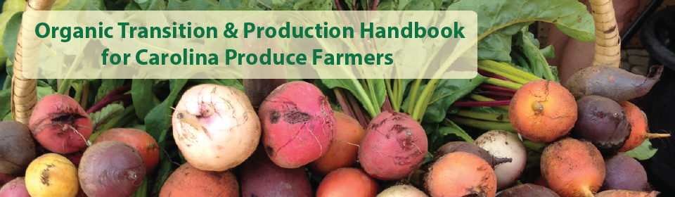 Organic Transition and production handbook