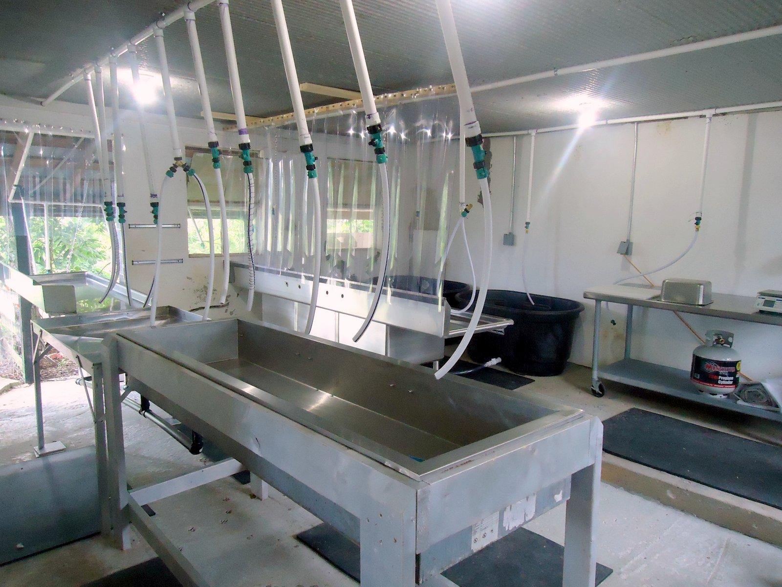 Eco-Friendly Small Scale Slaughterhouse : DQ Farm (est. 1991) |Chicken Slaughterhouse Design