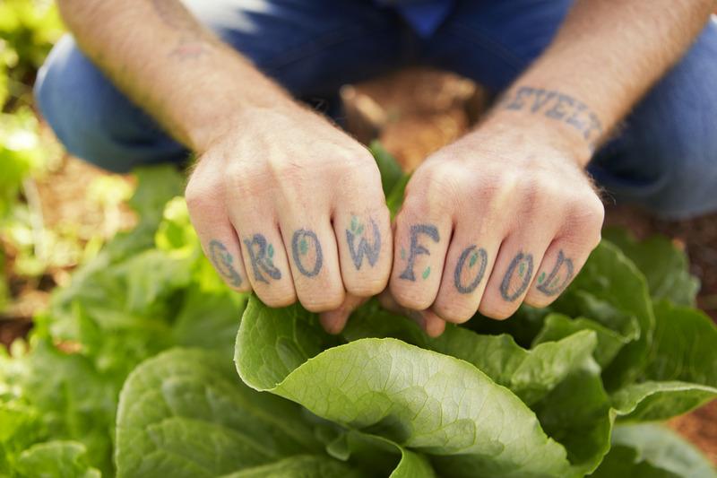 grow food lomax