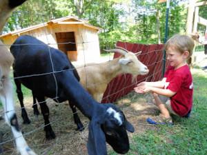 Upstate Farm Tour
