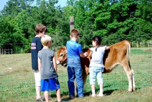 Educating youngsters on the farm