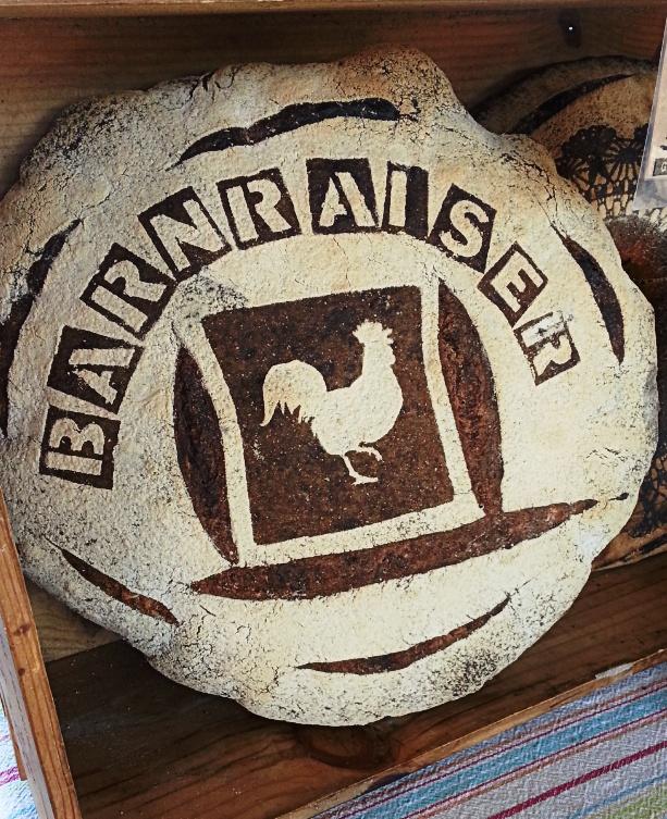 Barnraiser Campaign Photo.