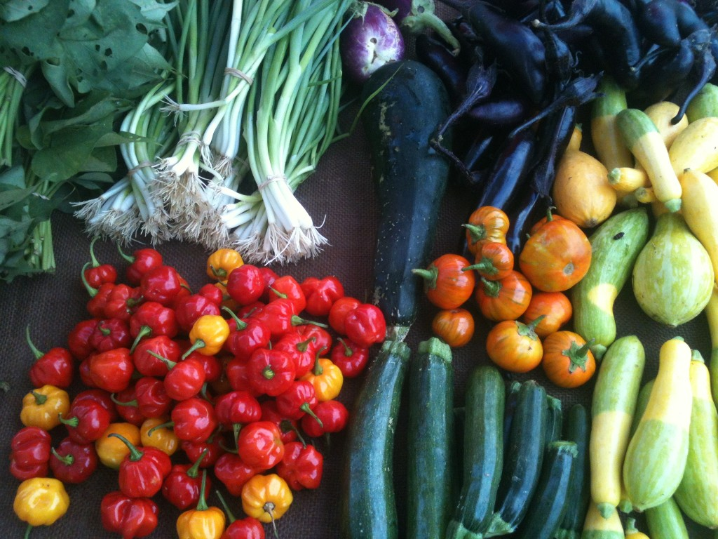 Colorful summer vegetables at the farmers market