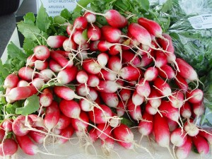 RambleRill radishes