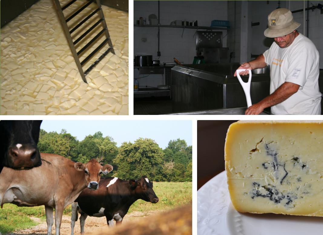Piemonte Farm Cheese