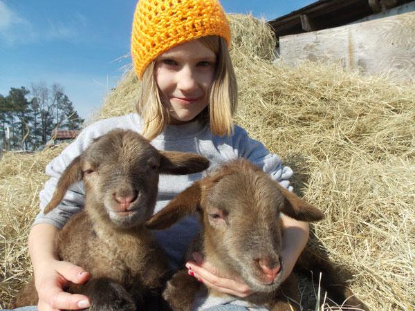 cow | Search Results | Carolina Farm Stewardship Association