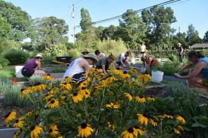Well Fed Community Garden