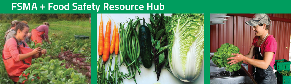 fsma-resource-hub