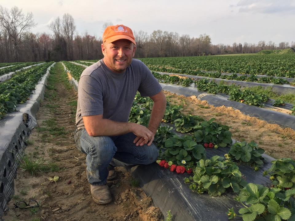 Jay Willard of Willard Farms, Gable, SC recently utilized CFSA's GAP Consulting services and achieved GAP certification Photo courtesy Willard Farms