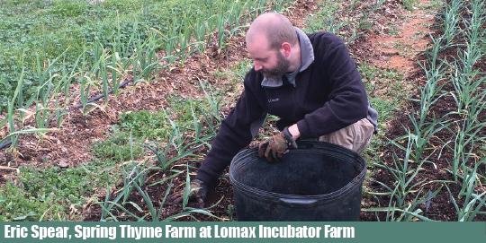 Eric Spear, Lomax Incubator Farm