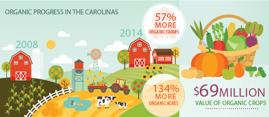 Organic-Progress-in-the-Carolinas