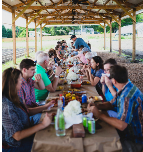 Farm Dinners, Cooking Workshops, Tastings & Tours – At a