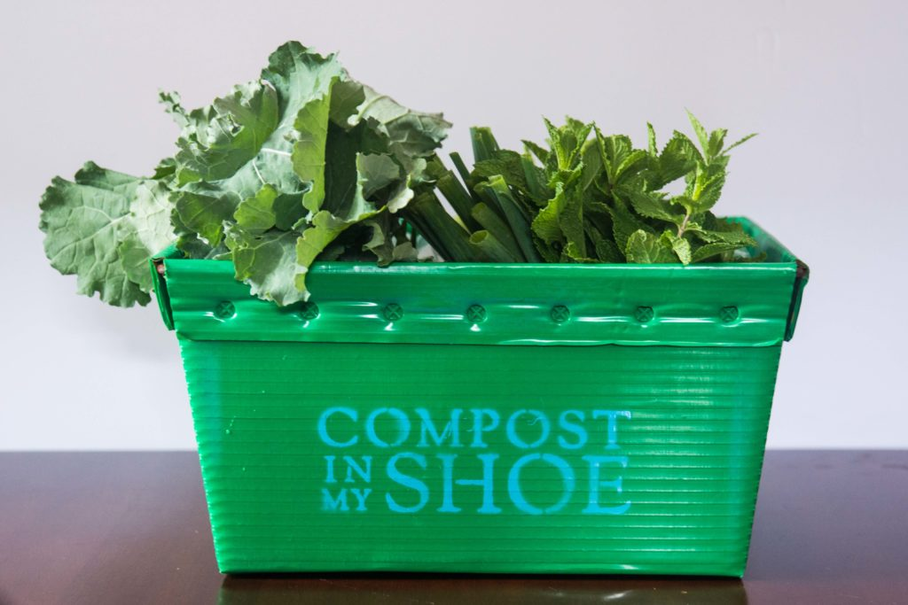 Compost in my shoe's CSA box