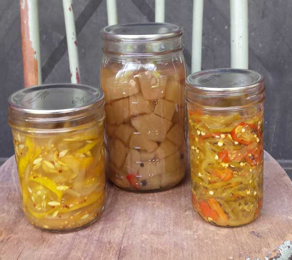 Pickled-tomatoes-and-squash
