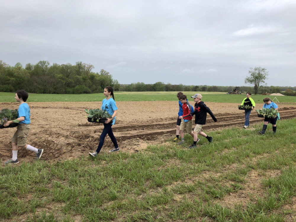 Students from Franklin Academy help transplant at First Fruits Farm in Louisburg. Photo: First Fruits Farm.
