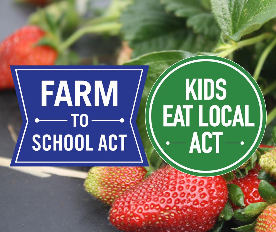 Blog | Carolina Farm Stewardship Association