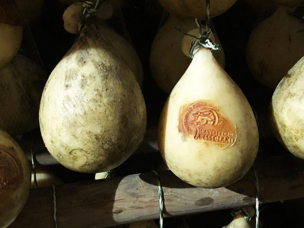 grains | Search Results | Carolina Farm Stewardship Association